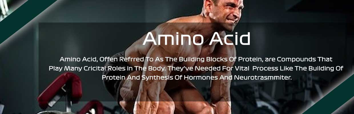 Amino Acids Muscles Supplements