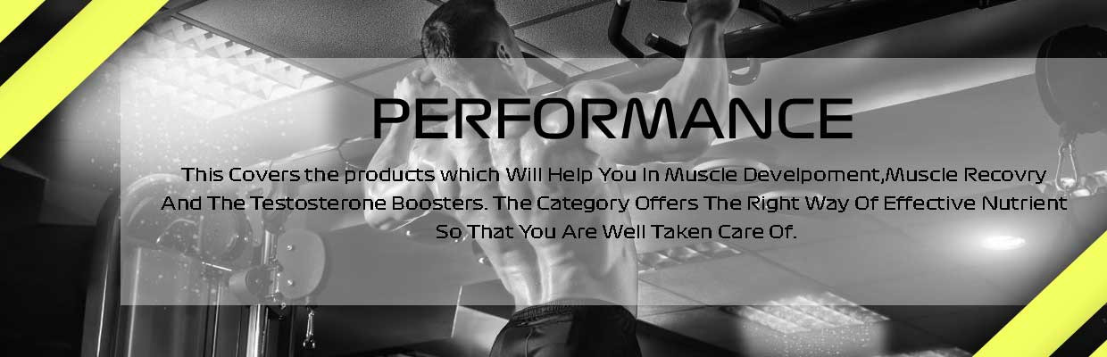 Performance Testosterone Booster Nutrients